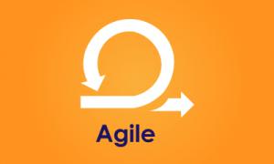 Entrenamiento de Agile