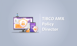 TIBCO AMX POLICY DIRECTOR