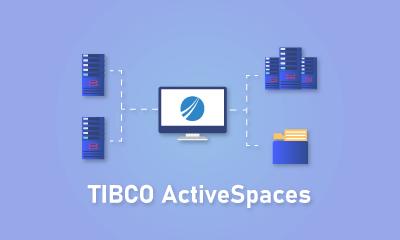 Entrenamiento ActiveSpaces