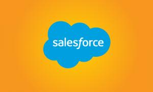 Capacitaicón en Salesforce