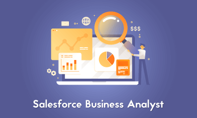 Salesforce Business Analyst